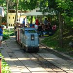 Junction Valley Railroad